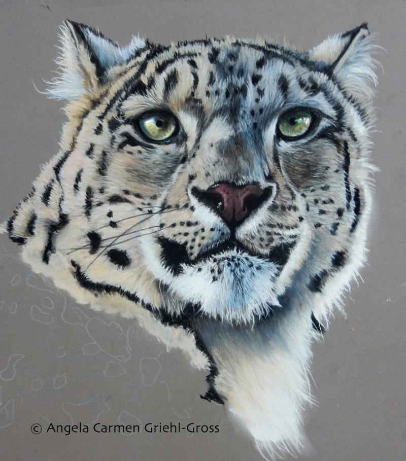 Tiere in Pastell