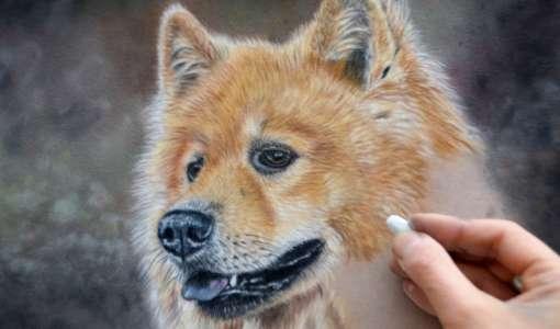 Tiermalerei in Softpastell auf Velourpapier