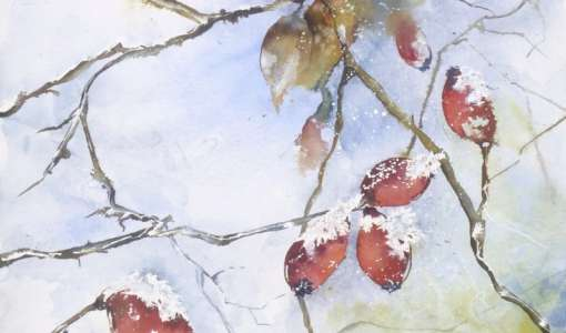 Winterwelt in Aquarell